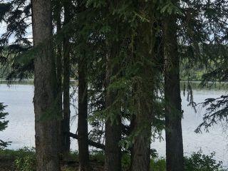 "Photo 2: 14003 275 Road: Charlie Lake Land for sale in ""CHARLIE LAKE"" (Fort St. John (Zone 60))  : MLS®# R2470464"