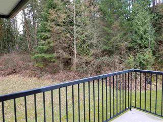 "Photo 17: 13420 237A Street in Maple Ridge: Silver Valley House for sale in ""Rock Ridge"" : MLS®# R2509601"