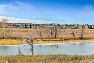 Photo 42: 96 Mt Robson Circle SE in Calgary: McKenzie Lake Detached for sale : MLS®# A1046953
