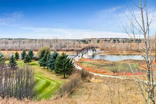 Photo 45: 96 Mt Robson Circle SE in Calgary: McKenzie Lake Detached for sale : MLS®# A1046953