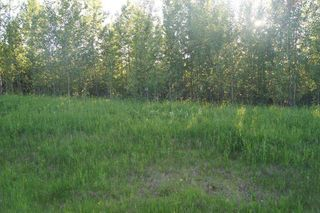 Main Photo: Range Road 150 HWY 748 East: Rural Yellowhead Rural Land/Vacant Lot for sale : MLS®# E4197112