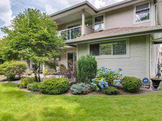 "Photo 1: 21 12071 232B Street in Maple Ridge: East Central Townhouse for sale in ""Creekside Glen"" : MLS®# R2473221"