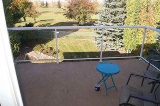 Photo 24: 8724 208 Street in Edmonton: Zone 58 House for sale : MLS®# E4176971
