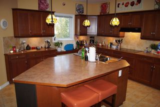 Photo 18: 8724 208 Street in Edmonton: Zone 58 House for sale : MLS®# E4176971
