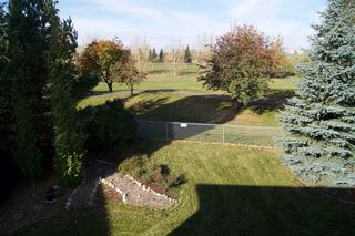 Photo 29: 8724 208 Street in Edmonton: Zone 58 House for sale : MLS®# E4176971