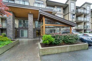"Main Photo: 209 30515 CARDINAL Avenue in Abbotsford: Abbotsford West Condo for sale in ""TAMARIND"" : MLS®# R2413665"