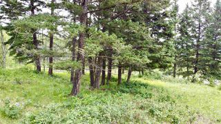 Photo 8: 437 WOODLAND Drive in Williams Lake: Williams Lake - City Land for sale (Williams Lake (Zone 27))  : MLS®# R2475217