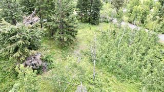 Photo 3: 437 WOODLAND Drive in Williams Lake: Williams Lake - City Land for sale (Williams Lake (Zone 27))  : MLS®# R2475217