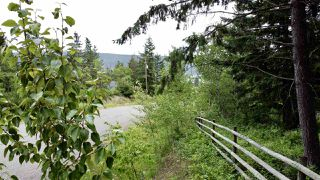 Photo 16: 437 WOODLAND Drive in Williams Lake: Williams Lake - City Land for sale (Williams Lake (Zone 27))  : MLS®# R2475217
