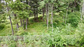 Photo 11: 437 WOODLAND Drive in Williams Lake: Williams Lake - City Land for sale (Williams Lake (Zone 27))  : MLS®# R2475217