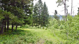 Photo 7: 437 WOODLAND Drive in Williams Lake: Williams Lake - City Land for sale (Williams Lake (Zone 27))  : MLS®# R2475217