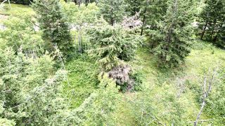 Photo 4: 437 WOODLAND Drive in Williams Lake: Williams Lake - City Land for sale (Williams Lake (Zone 27))  : MLS®# R2475217
