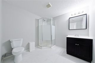 Photo 22: 100 DOVERVIEW Place SE in Calgary: Dover Detached for sale : MLS®# A1024220