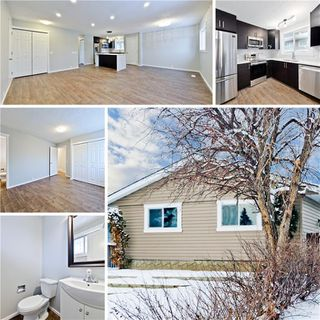 Photo 1: 100 DOVERVIEW Place SE in Calgary: Dover Detached for sale : MLS®# A1024220