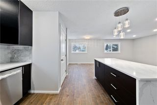 Photo 9: 100 DOVERVIEW Place SE in Calgary: Dover Detached for sale : MLS®# A1024220