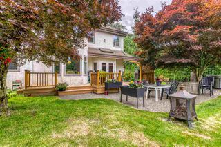 """Photo 18: 23604 64 Avenue in Langley: Salmon River House for sale in """"Williams park area"""" : MLS®# R2425889"""