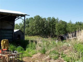 Photo 12: ANGUS FARM in Barrier Valley: Farm for sale (Barrier Valley Rm No. 397)  : MLS®# SK817568