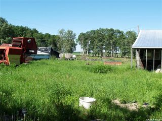 Photo 7: ANGUS FARM in Barrier Valley: Farm for sale (Barrier Valley Rm No. 397)  : MLS®# SK817568