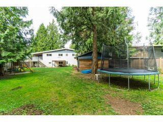 Photo 37: 19770 38A Avenue in Langley: Brookswood Langley House for sale : MLS®# R2493667