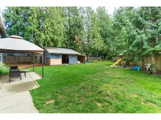 Photo 33: 19770 38A Avenue in Langley: Brookswood Langley House for sale : MLS®# R2493667
