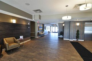 Photo 15: 204 2755 109 Street in Edmonton: Zone 16 Condo for sale : MLS®# E4182988