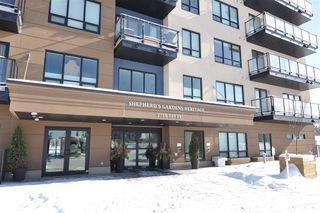 Photo 21: 204 2755 109 Street in Edmonton: Zone 16 Condo for sale : MLS®# E4182988