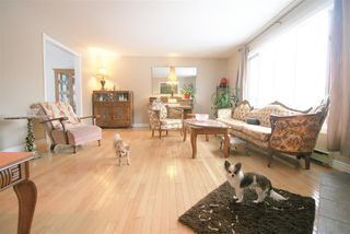 Photo 10: 760 BALSER Drive in Kingston: 404-Kings County Residential for sale (Annapolis Valley)  : MLS®# 202003647