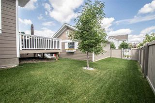 Photo 44: 7704 SUMMERSIDE GRANDE Boulevard in Edmonton: Zone 53 House for sale : MLS®# E4208538