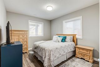 Photo 26: 7 Hillcrest Link: Airdrie Detached for sale : MLS®# A1035182