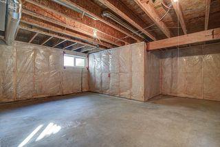 Photo 19: 5117 19A Avenue in Edmonton: Zone 53 House for sale : MLS®# E4174966