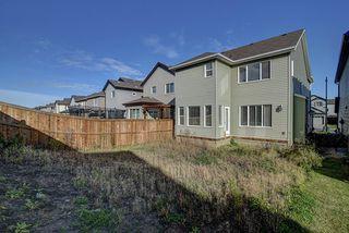 Photo 21: 5117 19A Avenue in Edmonton: Zone 53 House for sale : MLS®# E4174966