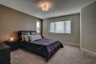 Photo 11: 5117 19A Avenue in Edmonton: Zone 53 House for sale : MLS®# E4174966
