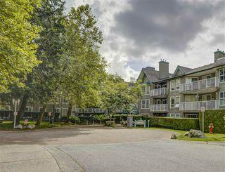 """Main Photo: 102 15140 108 Avenue in Surrey: Guildford Condo for sale in """"Riverpointe"""" (North Surrey)  : MLS®# R2492339"""