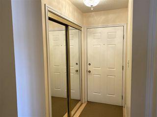Photo 3: 205 9329 104 Avenue in Edmonton: Zone 13 Condo for sale : MLS®# E4214862