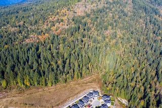 Photo 15: 3540 CONIFER Drive in Coquitlam: Burke Mountain Land for sale : MLS®# R2511383