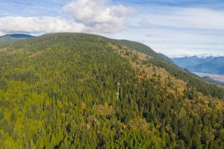 Photo 11: 3540 CONIFER Drive in Coquitlam: Burke Mountain Land for sale : MLS®# R2511383
