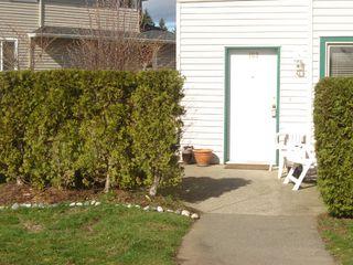 Photo 14: 103 4685 Alderwood Drive in Courtenay: Multifamily for sale : MLS®# 230997