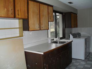 "Photo 15: 5270 BRADNER RD in ABBOTSFORD: Bradner House for rent in ""BRADNER"" (Abbotsford)"