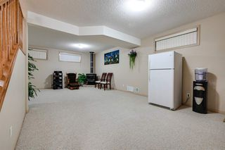 Photo 21: 8732 163 Avenue in Edmonton: Zone 28 House for sale : MLS®# E4165575