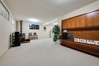 Photo 23: 8732 163 Avenue in Edmonton: Zone 28 House for sale : MLS®# E4165575