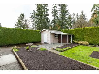 Photo 18: 1971 MAPLEWOOD Place in Abbotsford: Central Abbotsford House for sale : MLS®# R2412942