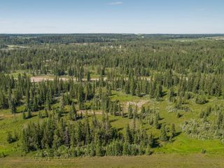 Photo 13: 11-34364 RANGE ROAD 42 in : Rural Mountain View County Land for sale (Mountain View)