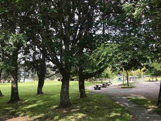 "Photo 12: 212 7240 LINDSAY Road in Richmond: Granville Condo for sale in ""SUSSEX SQUARE"" : MLS®# R2485223"