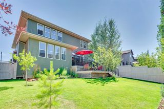 Photo 46: 421 EVERGREEN Circle SW in Calgary: Evergreen Detached for sale : MLS®# A1022781