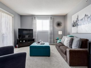 Photo 20: 3426 10 PRESTWICK Bay SE in Calgary: McKenzie Towne Apartment for sale : MLS®# A1023715