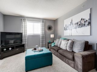 Photo 21: 3426 10 PRESTWICK Bay SE in Calgary: McKenzie Towne Apartment for sale : MLS®# A1023715