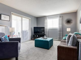 Photo 19: 3426 10 PRESTWICK Bay SE in Calgary: McKenzie Towne Apartment for sale : MLS®# A1023715