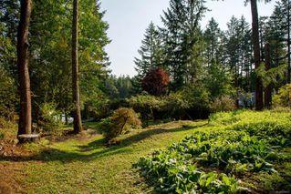 Photo 23: 685 Lost Lake Rd in : Hi Western Highlands House for sale (Highlands)  : MLS®# 855615