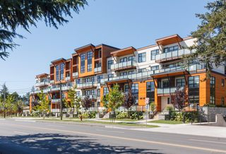 Photo 1: 415 4000 Shelbourne St in : SE Mt Doug Condo for sale (Saanich East)  : MLS®# 858753