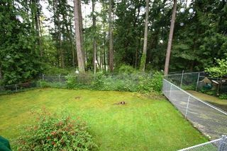 Photo 13: 6752 Jedora Dr in Central Saanich: Residential for sale : MLS®# 277166